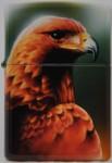 2003 Falcon