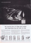 1960/10/03 The amazing story belly of a fish