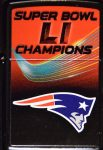 2016 Super Bowl LI Champions